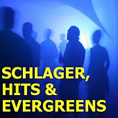 Schlager Hits & Evergreen Vol. 7 by Various Artists