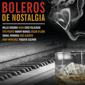 Boleros De Nostalgia by Various Artists