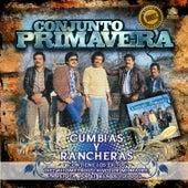Cumbias y Rancheras by Conjunto Primavera