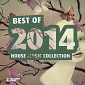 Best of 2014 - House Music Collection by Various Artists