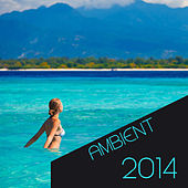 Ambient 2014 by Various Artists