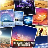 The Best Of Pulsar 2014 (Bonus Album) - EP by Various Artists