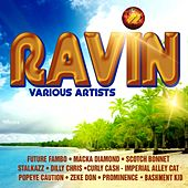 Ravin by Various Artists