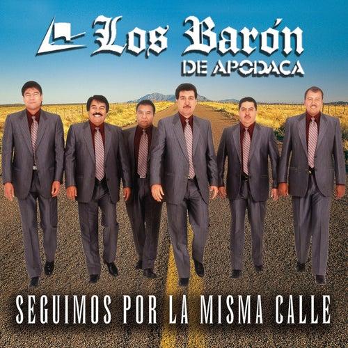 Segumos Por La Misma Calle by Los Baron De Apodaca
