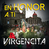 En Honor A Ti Virgencita, Virgencita De Guadalupe, Virgen Santa by Various Artists