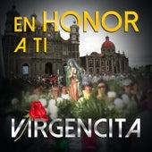 En Honor A Ti Virgencita, Virgencita De Guadalupe, Virgen Santa by Various Artists