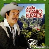 Confesion by Lalo El Gallo Elizalde