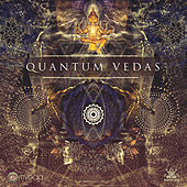 Quantum Vedas by Various Artists