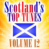 Scotland's Top Tunes, Vol. 12 by Various Artists