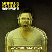 Dancing in the Key of Life (Remixes) by Markus Schulz