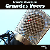Grandes Orquestas, Grandes Voces by Various Artists