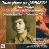 Fiesta Gitana Con Camarón y Sus Amigos. No Siento en el Mundo Más by Various Artists