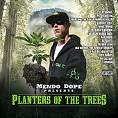 Planters of the Trees by Mendo Dope