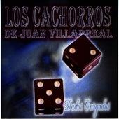Dados Cargados by Los Cachorros De Juan Villarreal