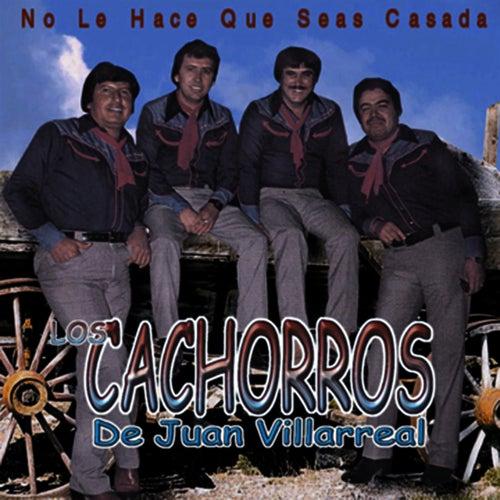 No La Hace Que Seas Casada by Los Cachorros de Juan Villarreal