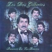 Amaneci En Tus Brazos by Los Dos Gilbertos