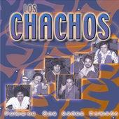 Palomas Que Andan Volando by Los Chachos
