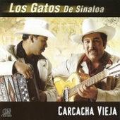 Carcacha Vieja by Los Gatos De Sinaloa