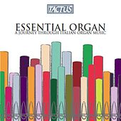 Essential Organ: A Journey Through Italian Organ Music by Various Artists