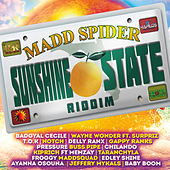 Sunshine State Riddim by Various Artists