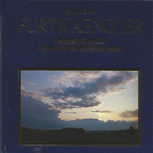 Wilhelm Furtwängler - Sinfonisches Konzert by Edwin Fischer