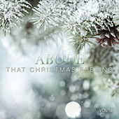 Abode: That Christmas Feeling, Vol. 16 by Various Artists
