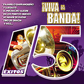 ¡viva la Banda! by Various Artists