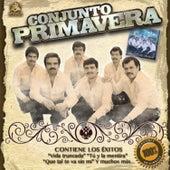 Vas a Conseguir by Conjunto Primavera