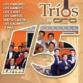 Trios de Oro by Various Artists