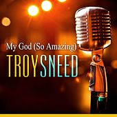 My God by Troy Sneed