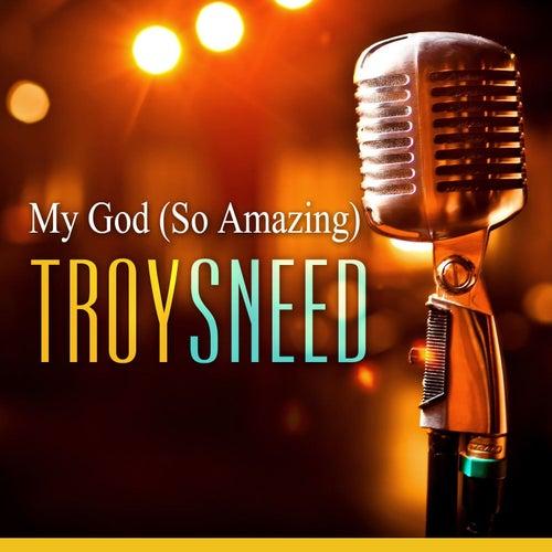 My God by Troy Sneed