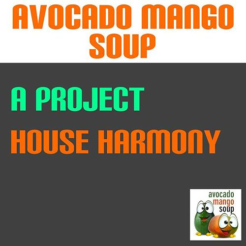 House Harmony by A Project