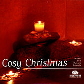 Cosy Christmas by Various Artists