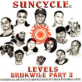 Levels Brokwile Part 3 by Various Artists