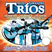 Los Grandes Tríos by Various Artists