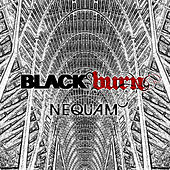 Nequam by Blackburn