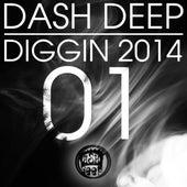 Dash Deep Diggin 2014, Vol. 01 by Various Artists