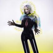 Vulnicura by Björk