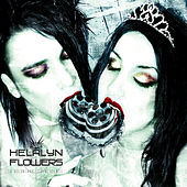 A Voluntary Coincidence (bonus disc) by Helalyn Flowers