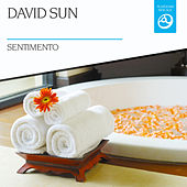 Sentimento by David Sun