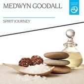 Spirit Journey by Medwyn Goodall