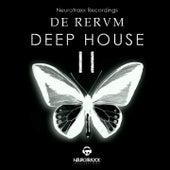 De Rerum Deep House, Vol. 2 by Various Artists