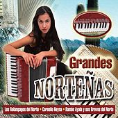 Grandes Norteñas by Various Artists