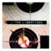 What A Waster by The Libertines