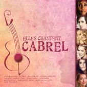 Elles chantent Cabrel von Various Artists