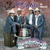 Con Acordeon y Banda by Los Gatos De Sinaloa