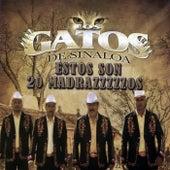Estos Son 20 Madrazzzzzos by Los Gatos De Sinaloa