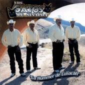 La Hummer de Culiacan by Los Gatos De Sinaloa