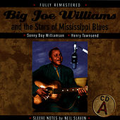Big Joe Williams And The Stars Of Mississippi Blues by Big Joe Williams