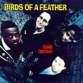 Stand Together by Birds Of A Feather